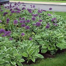 garden ideas easy flower beds small flower bed designs how to
