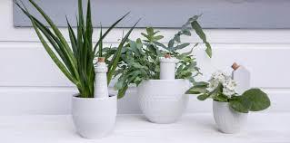 design blumentopf blumentopf zuhause pflanzen räder design