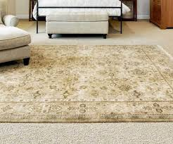 Area Rug Cleaning Tips Adorable Woodfor Your Fair Area Rug On Carpet Living Room