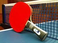 custom table tennis racket gypsy custom table tennis racket f70 on modern home decor