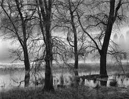 Black And White Photography Black White Photographers Represented By The Ansel Gallery