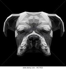 boxer dog black and white boxer dog stock vector images alamy