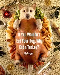 zucchinisaurus on vegans thanksgiving and animal