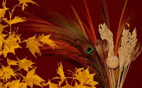 thanksgiving wallpaper for thanksgiving 2011 ppt bird i saw 3996