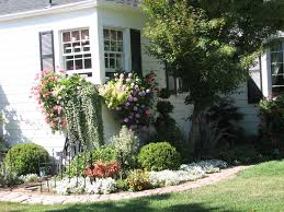 container gardening for beginners articles related easy simple