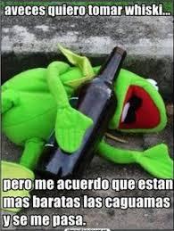 Rana Rene Memes - meme de la rana rene memes pinterest memes