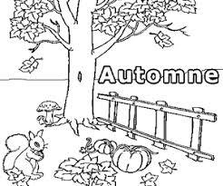 coloriage ã dessiner automne animaux