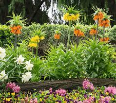 garden center u2014 for the home u2014 qvc com