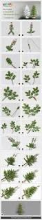 how to make a beaded christmas tree empezar a prepararse y son