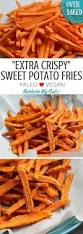 How To Cook A Sweet Potato In The Toaster Oven Best 25 Oven French Fries Ideas On Pinterest French Fries In