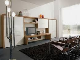 pictures of modern living room storage fair section interior