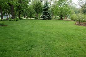 home lindstrom lawn care and landscaping antioch il