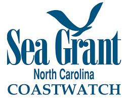 sharks of north carolina coastwatch