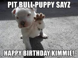 Pitbull Puppy Meme - pit bull puppy sayz happy birthday kimmie pit bull high five