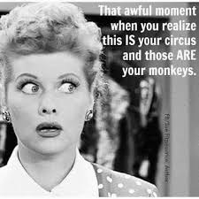 i love lucy memes 52 best i love lucy images on pinterest lucille ball desi arnaz