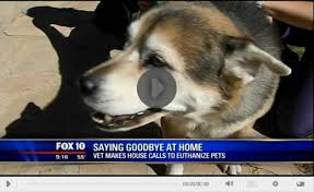 pet euthanasia at home gentle journey arizona in home pet euthanasia