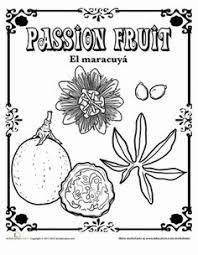 mango in spanish spanish spanish worksheets and spanish vocabulary