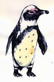 mc drawn magellanic penguin u2014 sketch watercolour ink and brush
