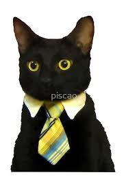 Meme Tie - business tie cat meme posters by piscao redbubble
