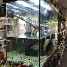 range of turtle tanks available amazing