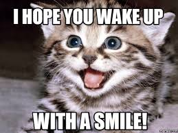 Smile Memes - 15 grin worthy smile memes