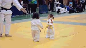 imagenes gif karate awkward martial arts gif find share on giphy