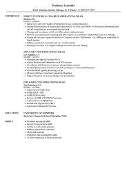 resume skills communication operations head resume samples velvet jobs