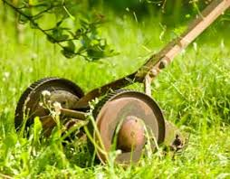 how to maintain push reel mowers