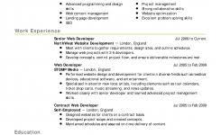 functional resume functional resume samples more template format