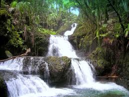 Kona Botanical Gardens Falls Picture Of Hawaii Tropical Botanical Garden