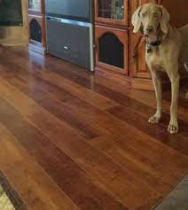 Best Flooring For Pets Best Flooring For Pets