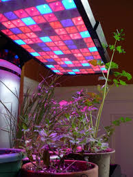 the fantastic world of led grow lights garden rant