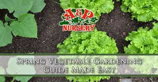 spring vegetable gardening guide made easy mesa gilbert queen