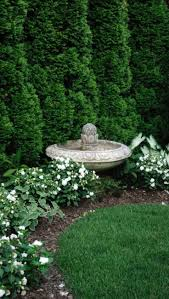 yards to meters best 25 yard privacy ideas on pinterest garden privacy screen