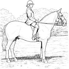 100 coloring pages of horses vector of a cartoon horse pair