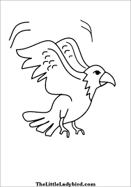 eagle coloring pages bird coloring pages animals coloring