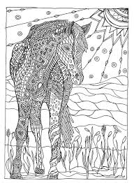 50 best art images on pinterest coloring books coloring
