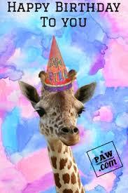 happy birthday animation ecards share free greeting postcards