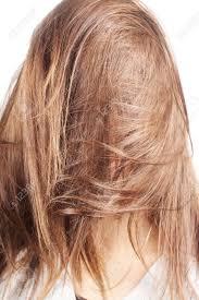 Chestnut Hair Color Pictures Chestnut Hair Color Stock Photos Royalty Free Chestnut Hair Color