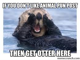 Animal Pun Meme - you don t like animal pun post