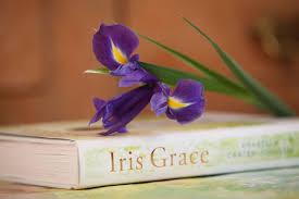 Iris by Iris Grace Arabella Carter Johnson 9781405923644 Amazon Com Books