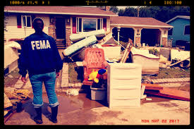 1 flood damaged property removal u0026 disposal service mrjunk org
