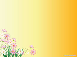 flower yellow background u2013 hd slide backgrounds