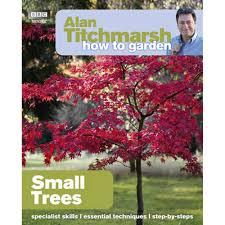 best tree for small garden fearless gardener