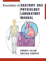 Essentials Of Human Anatomy And Physiology Book Online New U0026 Used Books Cheap Books Online Half Price Books
