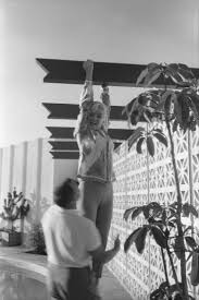 105 best marilyn monroe 1962 images on pinterest norma jean