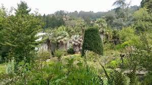 Berkeley Botanical Gardens View Of Uc Berkeley Botanical Garden Picture Of Uc Botanical