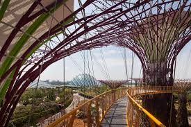 gardens by the bay by grant associates 03 robert such landscape