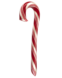 where to buy candy canes cinnamon candy hammond s candies