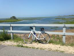 shining sea bikeway u2013 the 300 committee land trust